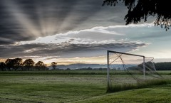 play-field